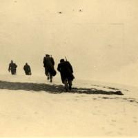 Patrigiani nella zona di Ligonchio.