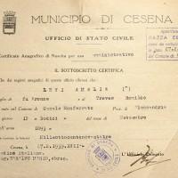 Documento attestante che Amalia Levi risulta di razza ebraica (Archivio anagrafico del Comune)