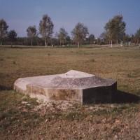 Cesenatico, resti di un bunker tedesco nel Parco di Levante.
