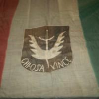 Bandiera del Battaglione Alleato.