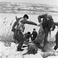Partigiani in azioni lungo gli argini del Reno.