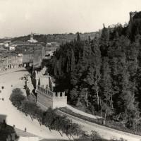 Cesena, vista di viale Mazzoni dal campanile della chiesa di S. Domenico, 1925 (BCM Fondo Dellamore, FDP 766