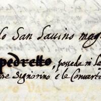 Attestazione dell'esistenza di un ghetto a Forli, sec. XVI (ASFo)