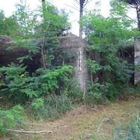 Bunker nella Pineta delle Motte.