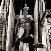 La statua del Nettuno, protetto dai bombardamenti da un'imbragatura