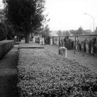 Il cimitero ebraico di Lugo (RA)