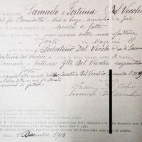 Registro ditte 1911-1925, Samuele e Fortuna Del Vecchio (CCIAA)
