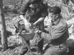 Partigiani ad Argenta.