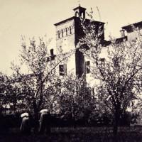 Fioritura davanti al Castello Campori. Nella prima metà del Novecento gli alberi – e le campagne – giungono fino a ridosso del palazzo monumentale.