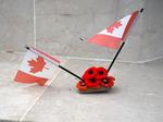 Poppy lasciati sulle tombe dalle delegazioni canadesi