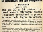 Disposizioni del Comune di Modena per la legna da ardere.