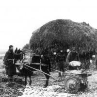 27 febbraio 1945. Partigiani della 28ª brigata che caricano munizioni  in un carretto