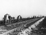 Internati militari italiani sono costretti a lavorare per i tedeschi.