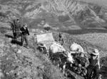 Un contadino insieme ad alcuni partigiani e soldati italiani traina una jeep impantanatasi a Pieve di Rivoschio nell'ottobre del 1944.
