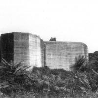 Bunker tedeschi lungo la strada Romea a nord di Comacchio. Foto C. Fanti