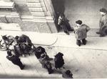 Immagine scattata di nascosto da Oreste Battioni all'ingresso della sede del Partito fascista repubblicano